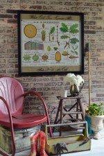 Vintage botanical wall art - Oak Tree educational poster window art