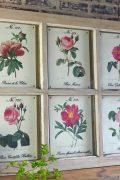 Vintage botanical wall art