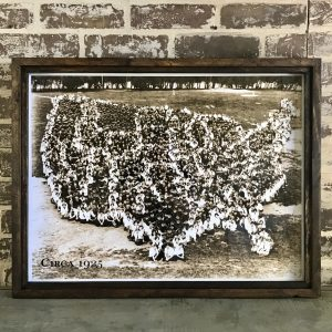 USA map formation photo